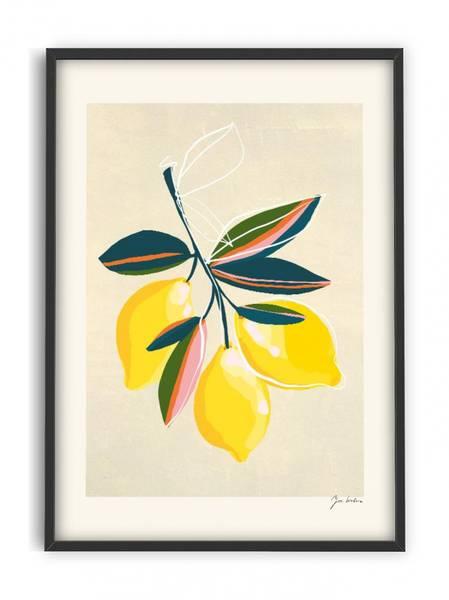 Bilde av PLAKAT - Zoe - Lemons - 30x40
